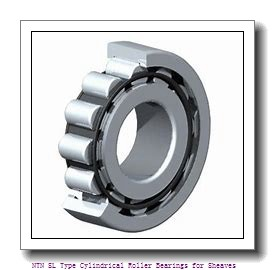 320 mm x 480 mm x 218 mm  NTN SL04-5064NR SL Type Cylindrical Roller Bearings for Sheaves