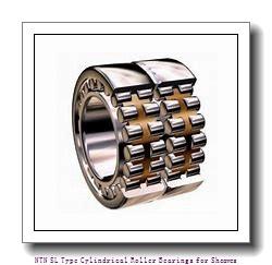 300 mm x 460 mm x 218 mm  NTN SL04-5060NR SL Type Cylindrical Roller Bearings for Sheaves