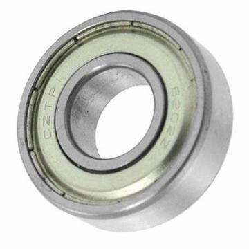 one way bearing 6202Z Chrome steel Washing Machine Drum Bearings
