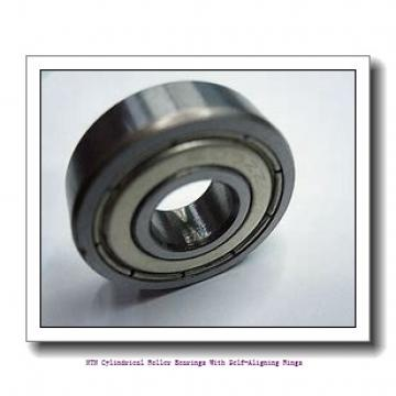 NTN R11A12V Cylindrical Roller Bearings With Self-Aligning Rings